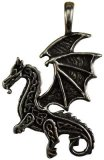 Celtic Dragon amulet